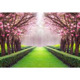 Fotobehang Garden Dreams