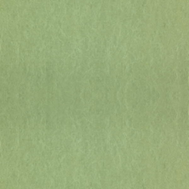 Dutch Wallcoverings Chroma 59-Linden