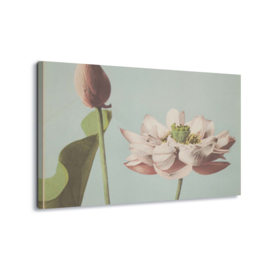 Canvasdoek Lotus Blossom, Ogawa Kazumasa