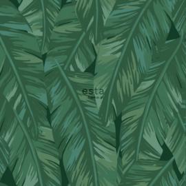 Esta Jungle Fever 151-139016