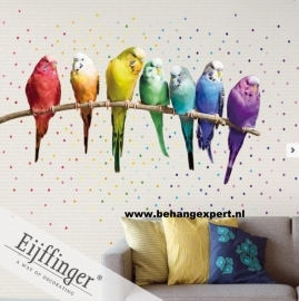 Eijffinger Wallpower Wonders Rainbow Budgies 321518