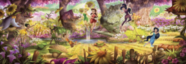 Komar fotobehang 4-416 Fairies Forest