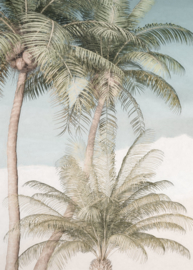 Komar Raw R2-003 Palm Oasis