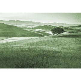 Fotobehang Heuvellandschap Vintage in Groen