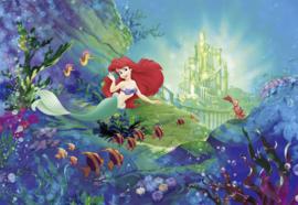 Komar fotobehang 8-4021 Ariel's Castle