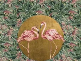 BN Studio Meeting Flamingos 200386DX
