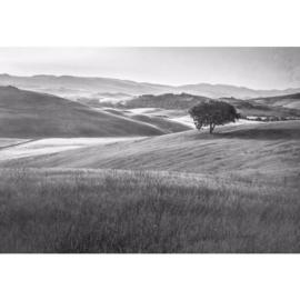 Fotobehang Heuvellandschap Vintage in Zwart Wit