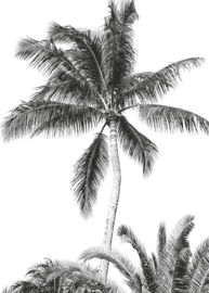 Komar Into Adventure IAX4-0011 Retro Palm  200cm x 280cm hoog
