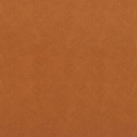 Dutch Wallcoverings Chroma 38-Copper