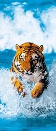 Fotobehang Idealdecor 00590 Bengal Tiger