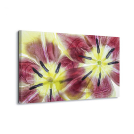 Canvasdoek Flower art