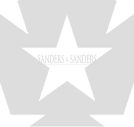 Behang Sanders & Sanders Trends&More 935257 sterren