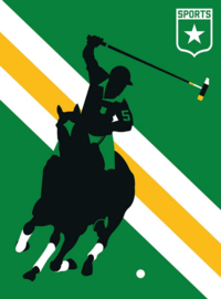 Fotowand Horse Polo by Bo Lundberg afm. 200cm x 270cm hoog