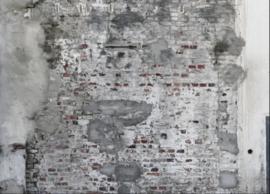 Rasch Factory 445404 digitaal geprint fotobehang 419 x 300cm hoog