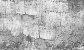 Vanilla Lime wallpapers Murals 014335