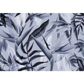 Fotobehang Tropicalia Blauw
