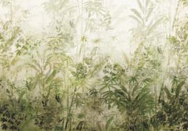 Komar Raw R4-053 Wilderness