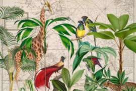Fotowand Palm tree map by Andrea Haase afm. 400cm x 270cm hoog