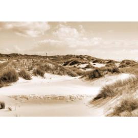 Fotobehang Duinlandschap Sepia