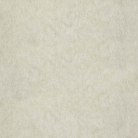 Dutch Wallcoverings Chroma 17-Linen