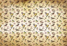 Fotobehang Vogel patroon