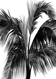 Fotowand Sunset Boulevard by Kubistika afm. 200cm x 280cm hoog