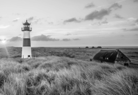 Fotobehang Vuurtoren in de duinen in zwart/wit