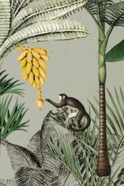 Onszelf Botanique 539196 mural