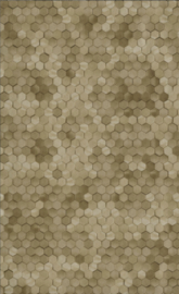 BN Dimensions by Edward van Vliet - 219587