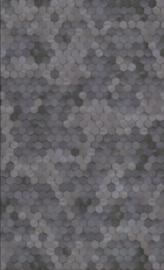 BN Dimensions by Edward van Vliet - 219581
