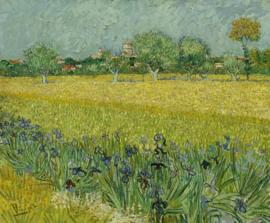 fotobehang BN Wallcoverings Van Gogh 30543 Veld met irissen bij Arles