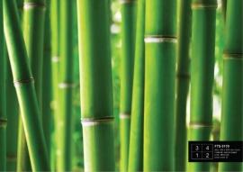 Fotobehang AG Design FTS0170 Bamboo