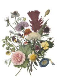 Esta photowallXL 158911 Bouquet
