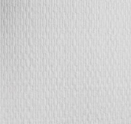 Glasweefselbehang geimpregneerd 25.0mtr motief fijne ruit