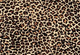 Fotobehang Leopard