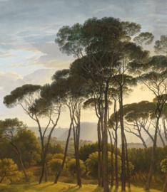 Kek Wonderwalls Golden Age Landscapes BP-043