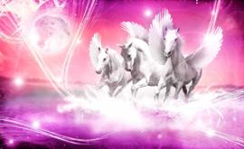 Fotobehang Gevleugelde Paarden Pegasus Roze