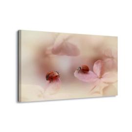 Canvasdoek Lieveheersbeestjes Ellen van Deelen