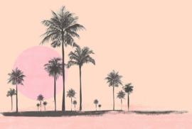 Fotowand Miami beach sunrise 2 by Andrea Haase afm. 400cm x 270cm hoog