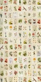 Eijffinger Pip Studio Wallpower 341086 Botanical Paper