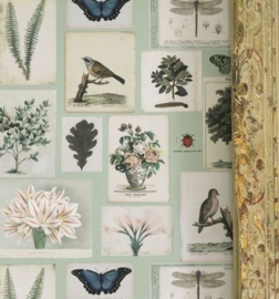 John Derian for Designers Guild PJD6001/02 Flora and Fauna