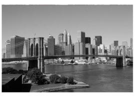 Fotobehang Manhattan grijs