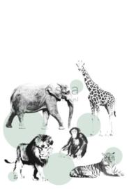 Esta photowall XL2 for kids 158704 Animals