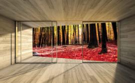 Fotobehang Uitzicht op het Bos