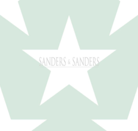 Behang Sanders & Sanders Trends&More 935258 sterren