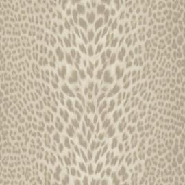 Roberto Cavalli Wallpaper RC18035