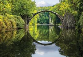 Fotobehang Bos bij meer
