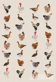 Fotobehang Noordwand Farm life 3750026 Birds