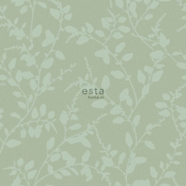 Esta Home Blush - 148731