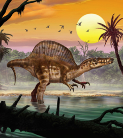 Komar Into Adventure IANGX5-010 National Geographic Spinosaurus 250cm x 280cm hoog